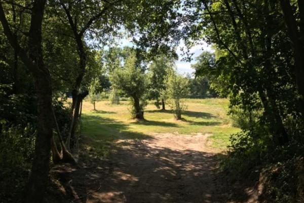 Landgoed De Zonnebloem _ Groen Kamperen _ Doorkijkje Zonnegaard naar Zonneveld (Medium)